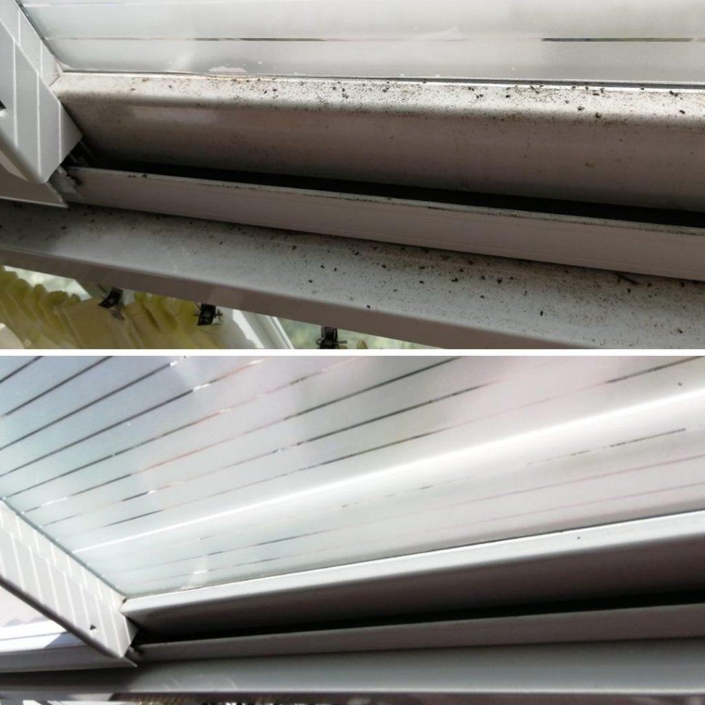 Viherhuoneen ikkunanpielet talven jälkeen. Ja pesty laventeli siivoussaippualla. Helposti ja hankaamatta