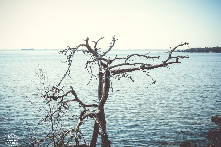Saaren Taika fiiliskuvia saaristosta